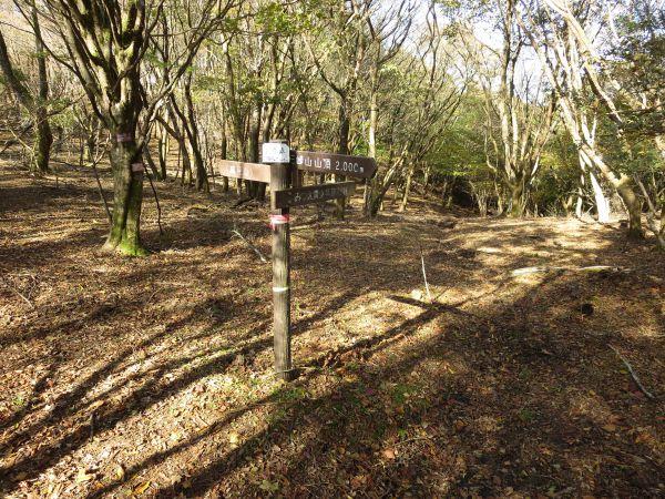 0cc6229055 新道峠に到着!八丁平からは45分ほど。真っ直ぐ進むと高見山まで稜線が続きます。みつえ青少年旅行村へはここを右に進みます。