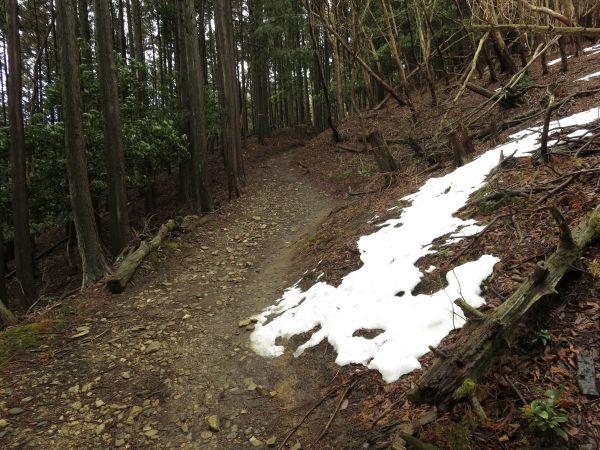44d2217c1f 道の脇に雪がある!この日は2月のこの時期にしては、ありえないほど気温が高く、明け方に道路沿いの気温計では10℃もありました!おそらくこの時間帯ではもっと高かった  ...